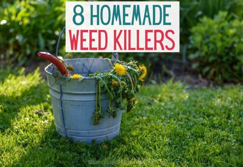 8 of the Best Homemade Weed Killers