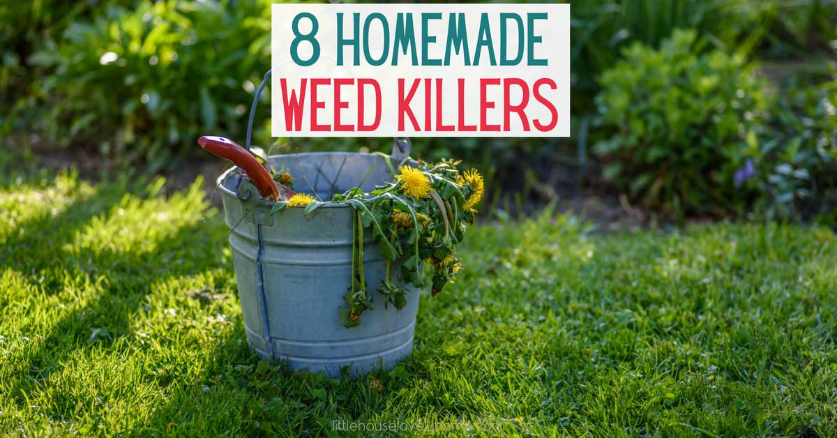 Making homemade weed killer spray is a great way to save money and reduce the chemicals in your home and garden.