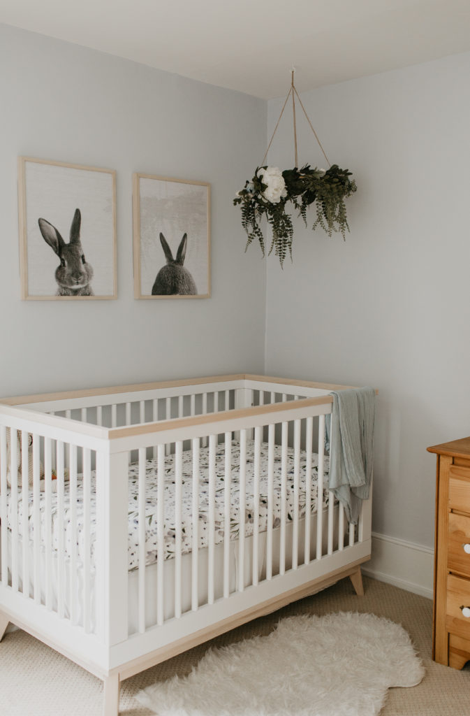 A plant hanging from the ceiling in a nursery